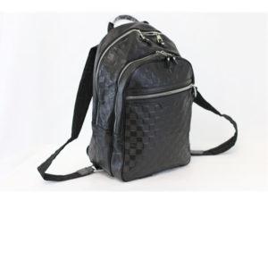 LV Bag Pack